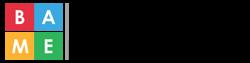 BAME Apprentice Network